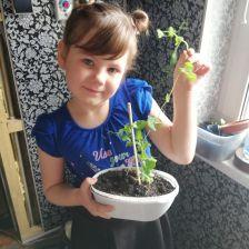 Софья Годунова в конкурсе «Веселый cадовод»