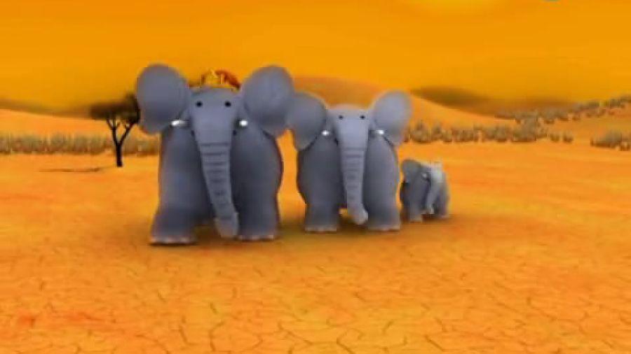 Смешные факты. Слоны