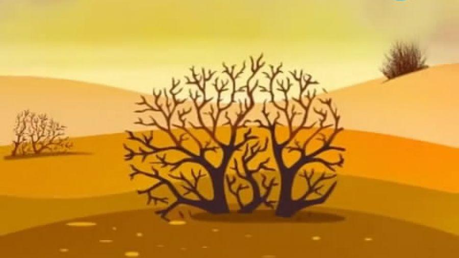 Выпуск 270 «Пустыни». Видео 2