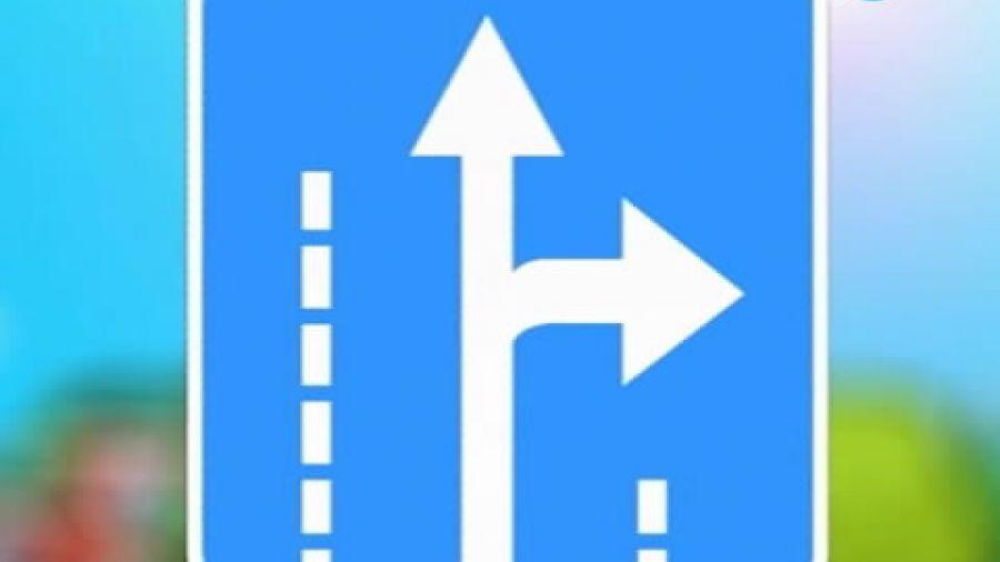 Знак «Направление движения по полосе»