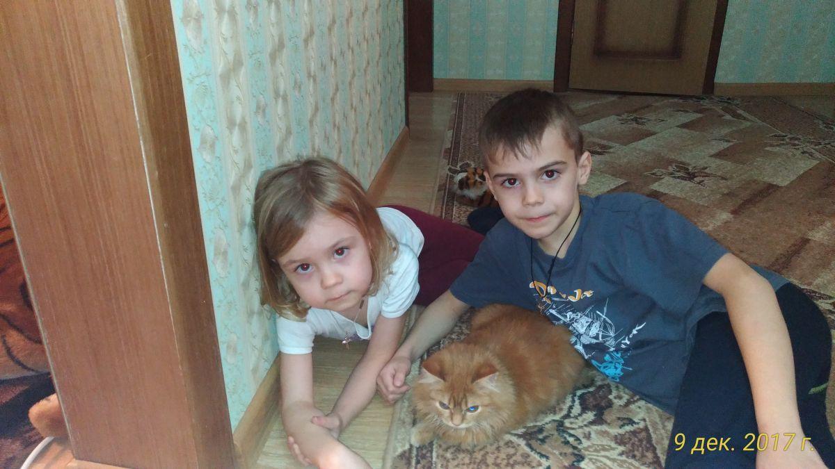 Фенин Денис Романович