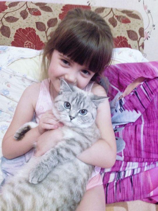 Anasteisha