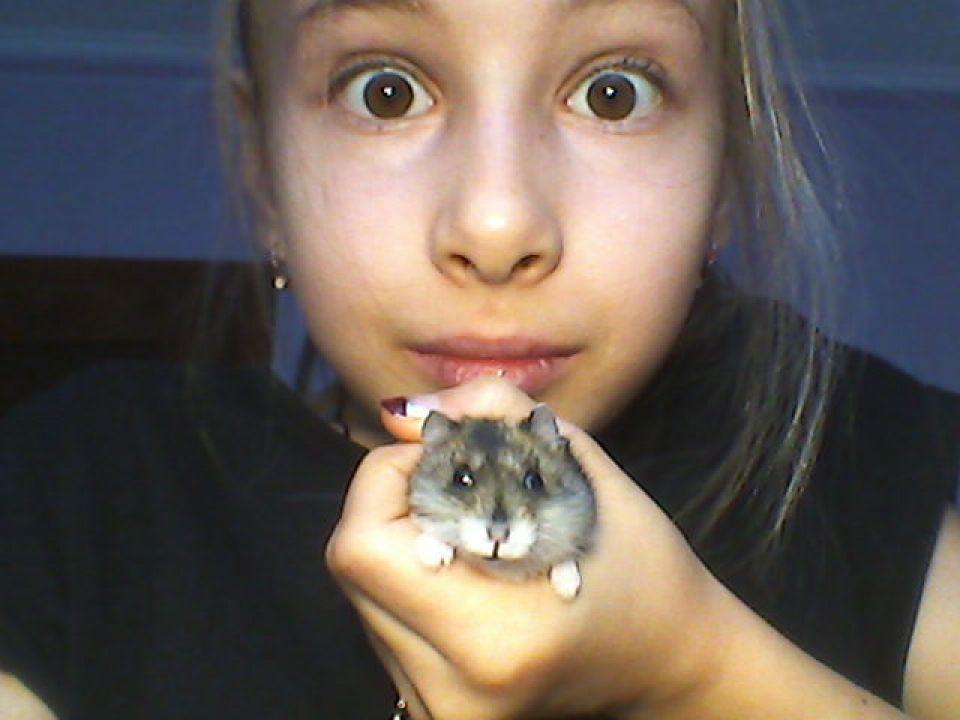 Еременко Анна Александровна