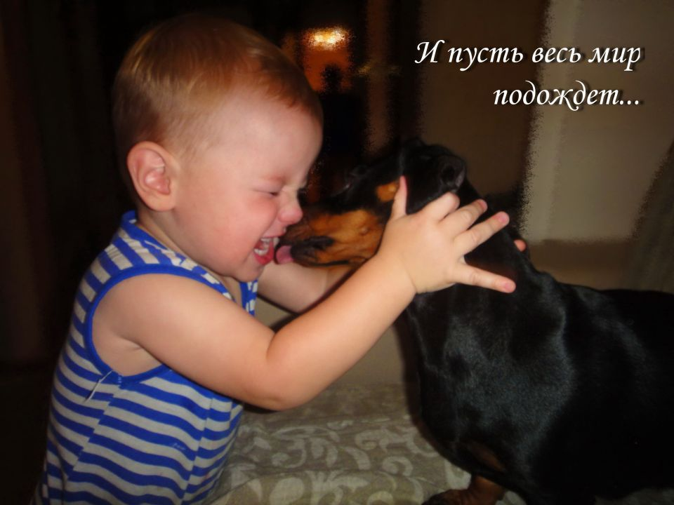 Холодов Марк Иванович