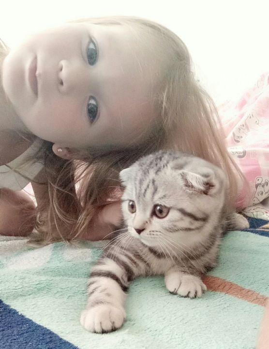 Шакирова Алина Руслановна