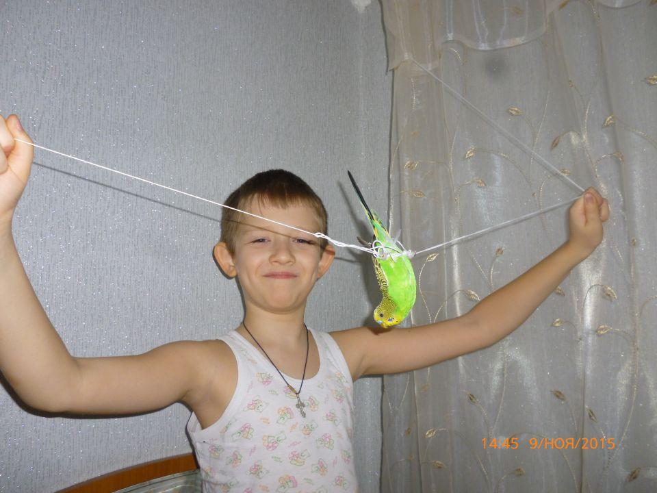 Крылов Евгений Владимирович