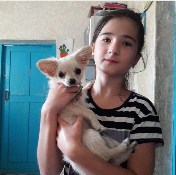 Алиева Малика Руслановна
