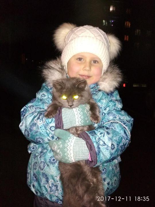 Гречихина Ксения Витальевна