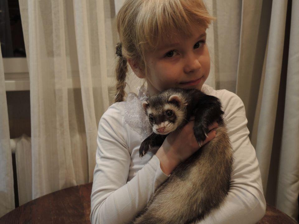 Мирошникова Полина Алексеевна