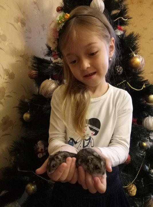 Маслакаева Ася
