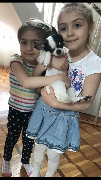 Чиришьян Алина Суреновна