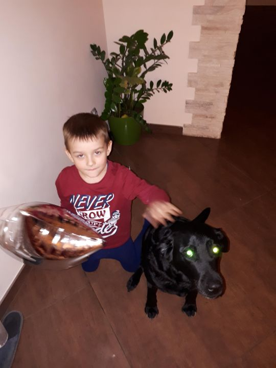 Гутуев Кирилл