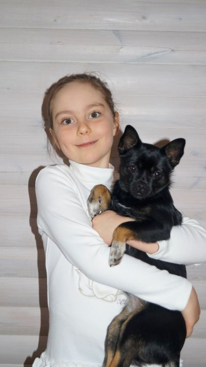 Фогель Полина Андреевна