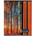 Hatber Тетрадь Полосатый мир 96 листов в линейку цвет оранжевый