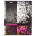 Hatber Тетрадь Цветущие пейзажи 60 листов в клетку цвет сиреневый