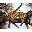 """Живопись на холсте Белоснежка """"Леопард на отдыхе"""", 40 х 50 см"""