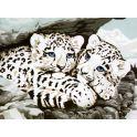 """Набор для рисования по номерам Цветной """"Ягуарята"""", 30 x 40 см"""