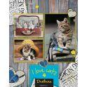 Апплика Дневник школьный для старших классов Паттерн Котята С3624-01