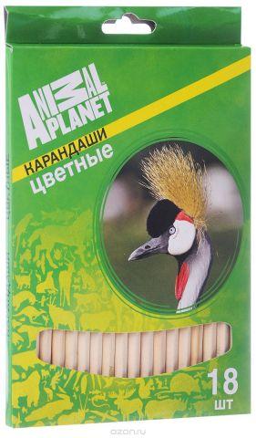 Action! Набор цветных карандашей Animal Planet Птицы 18 цветов