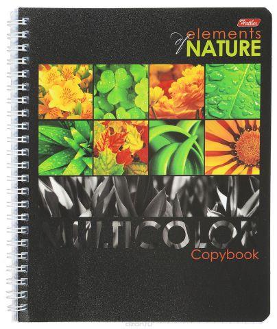 Hatber Тетрадь Multicolor 96 листов в клетку цвет оранжевый формат А5