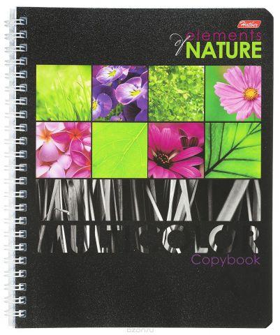 Hatber Тетрадь Multicolor 96 листов в клетку цвет сиреневый формат А5