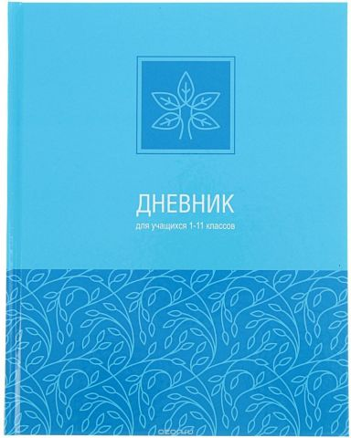 BG Дневник школьный Monotone