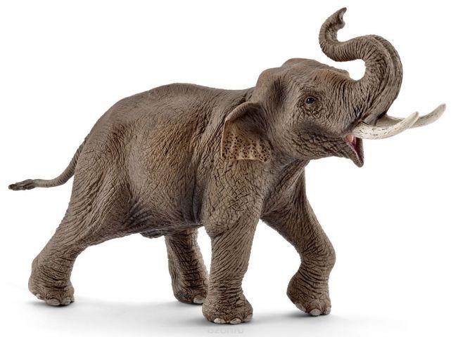 Schleich Фигурка Азиатский слон самец