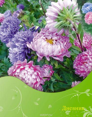 Апплика Дневник школьный Цветы С1558-40