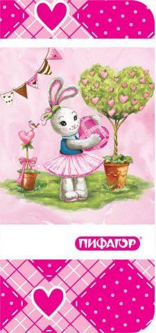 Пифагор Пенал-косметичка Зайка
