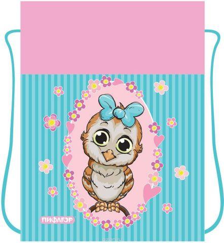 Пифагор Сумка для детской обуви Сова цвет голубой
