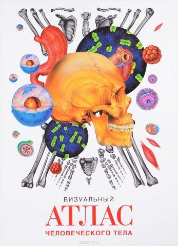 Визуальный атлас человеческого тела