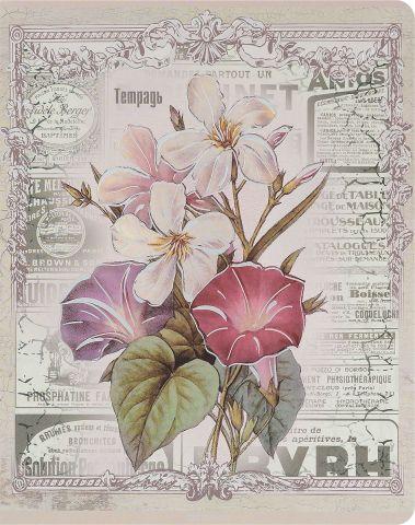Феникс+ Тетрадь Красивые цветы Колокольчик 48 листов в клетку