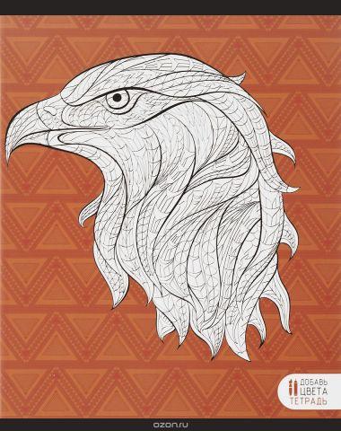 Канц-Эксмо Тетрадь Фантастические животные Орел 48 листов в клетку