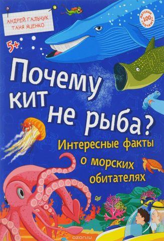 Почему кит не рыба? Интересные факты о морских обитателях