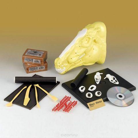 Edu-Toys Набор для 3D моделирования Лошадь VT038