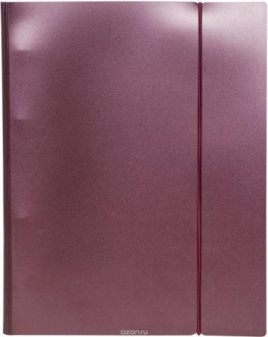 Hatber Тетрадь на кольцах Metallic 120 листов в клетку цвет бордовый