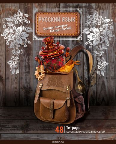 BG Тетрадь Багаж Знаний 48 листов в линейку цвет коричневый серебристый 18389